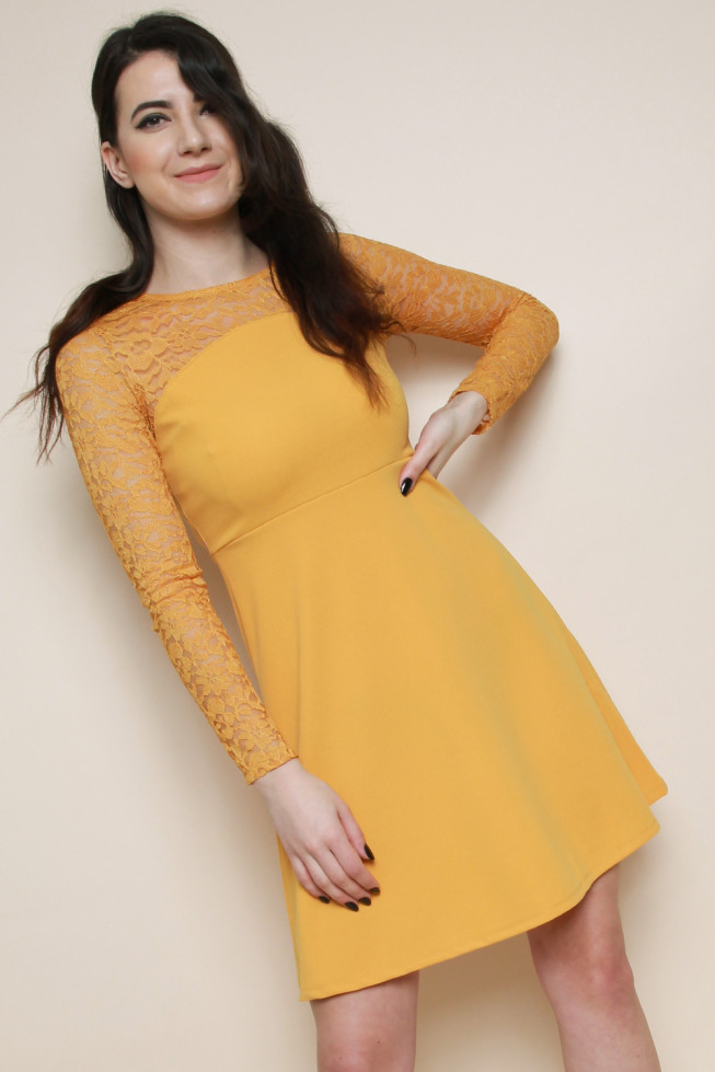 Lace Long Sleeves Skater Dress