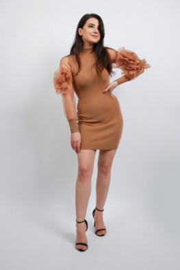 Rose Balloon Sleeve Knitted Dress